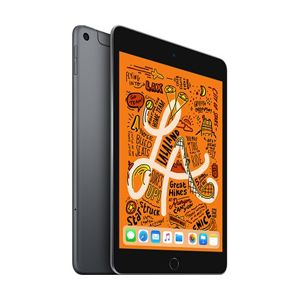 iPad mini Wi-Fi + Cellular 256GB Space Gray